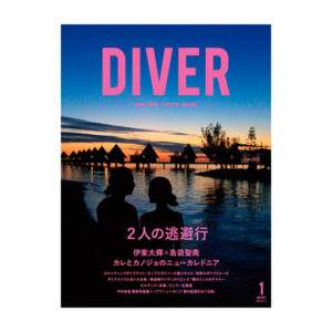 shellwomb_diver_161220